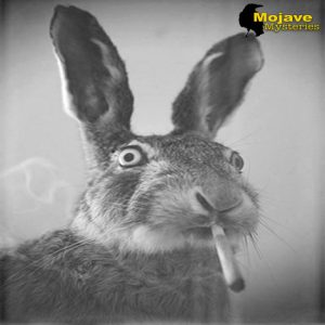 smoking rabbit